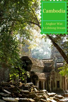 One of the most amazing sights I've ever seen - read all about my visit to the Temples of Angkor.