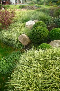 I like the boulders and grass. I could deal without the high maintenance perfectly round shrubs though. Too much work.