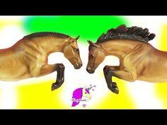 Best Of British Bay Connemara Pony Jumping Model Horse - Honeyheartsc Review…