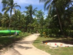 Jungle Kids Phangan (Ko Pha Ngan) - 2019 All You Need to Know Before You Go (with Photos) - Ko Pha Ngan, Thailand Do What You Want, Need To Know, Perfect Place, The Good Place, Kids Attractions, 8 Year Old Boy, Koh Phangan, Sit Back And Relax, 4 Year Olds