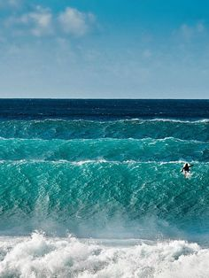 #Surf's up.