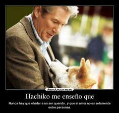 Hachi..!  ♥
