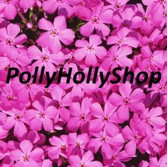 Really love what PollyHollyShop is doing on Etsy.