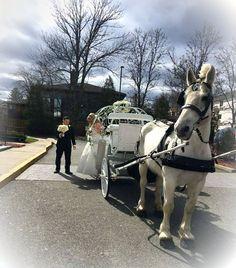 Cinderella Wedding in Staten Island NY April 1 2017