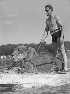 Me?  Just taking my pet lion out water-skiing.   Today, March 22, 2012 is World Water Day.  Check out my Water Issues board @Sassafras on Pinterest!