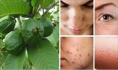 Use Only This Sheet And You'll Beat Wrinkles, Acne, Dark Spots And Skin Allergies Sun