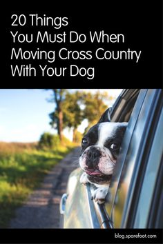 Moving cross country can be an exciting adventure for you and your household, and it can be even more fun with your four-legged co-pilot at your side—that is if you know what you are doing. Long distance travel isn't without unique hazards for dogs of all kinds, but if you are properly prepared then moving cross-country with your dog should be a walk in the park.