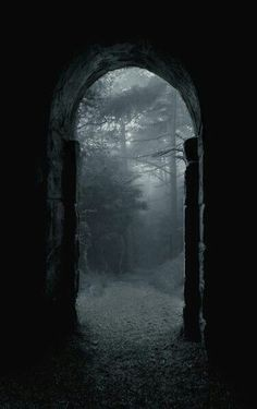 dark, forest, and Darkness image