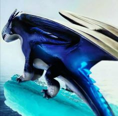 Dragon Wolf, Dragon Rider, Dragon 2, Disney Stairs, Dragon Family, Dibujos Anime Chibi, Httyd Dragons, Mythical Creatures Art, Wings Of Fire