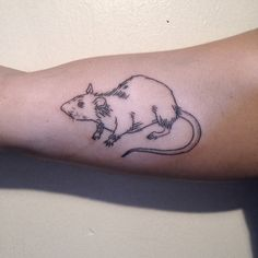 groundwaterpokes: Hand poked rat on Ayda