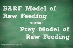BARF Model Raw Feeding and Prey Model Raw Feeding
