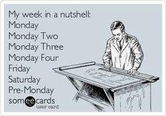 My week in a nutshell