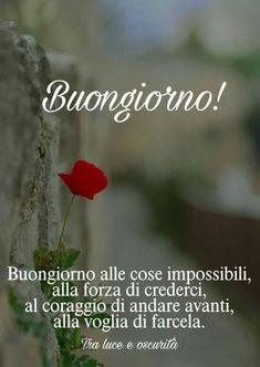 buongiorno amore (10) Good Morning, Improve Yourself, Pocahontas, Snoopy, Night, Messages, Smile, Happy Brithday, Positive Quotes