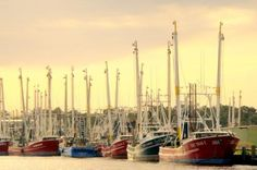 Bayou La Batre, Alabama   Not Baldwin County - south of Mobile - a great place to see-especially if you love shrimp!