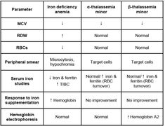 Types of microcytic, hypochromic anemia... Iron deficiency will have a high RDW with low ferritin... Thalassemia's will have normal RDW and elevated ferritin (due to RBC turnover)... after thalassemia is suspected, electrophoresis should be done to distinguish alpha (normal) from beta (elevated HbA2 levels)