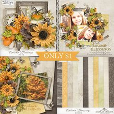 New Autumn Blessings Collection by Indigo Designs - Each pack JUST $1, until October 20. With its golden yellow, soft orange and warm gray colors, it is a joyful portrayal of all of our blessings. http://www.pickleberrypop.com/shop/manufacturers.php?manufacturerid=83  You can purchase the whole collection 6 pack (a $18.64 value) for JUST $6 and get the beautiful Add-on FREE! http://www.pickleberrypop.com/shop/product.php?productid=34821&cat=0&page=1