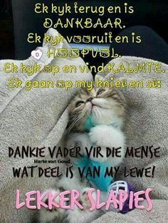 Goeie Nag, Afrikaans Quotes, Sleep Tight, Good Night, Positive Quotes, Positivity, Decor, Nighty Night, Quotes Positive