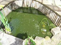 How to build a garden fish pond
