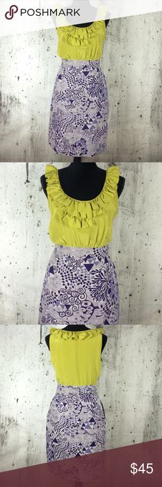 NWOT Anthropologie for Maeve exquisite dress Anthropologie for Maeve exquisite dress 100% silk above the knee length Anthropologie Dresses