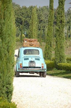 Fiat 500 in Toscana Oh The Places You'll Go, Places To Travel, Travel Things, Travel Stuff, Hello Seattle, Cars Vintage, Vintage Models, Antique Cars, Travel Chic