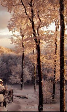 #BeautifulThings #Winter #Snow
