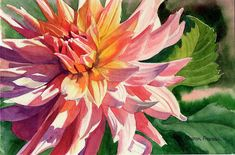 Colorful Dahlia by Sharon Freeman - Colorful Dahlia Painting - Colorful Dahlia Fine Art Prints and Posters for Sale
