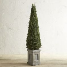 A statement maker, our 4-foot, faux cedar, cone-shaped topiary will never need watering or pruning. It comes in a stylish paneled box planter and will add a stately elegance, indoors or out.