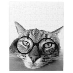 Bored Cat with Glasses Puzzle
