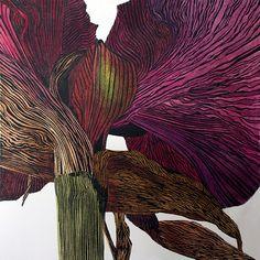Irene Helen MacKenzie: Dark amaryllis, linocut print in hand coloured variable limited edition