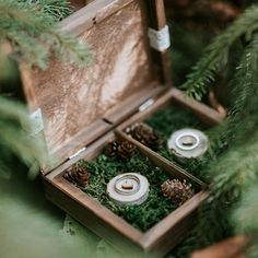 #weddingday #wedding #polishwedding #bridelook #beautifulbride #boho #detail #weddingdetails #rings #weddingrings #love #forest #wild #slubnaglowie #nature #whitedress #loveisintheair #married #rustic #boho #weddings