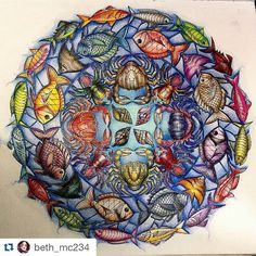 Instagram media desenhoscolorir - Lindo demais! By @beth_mc234 ・・#oceanoperdido…