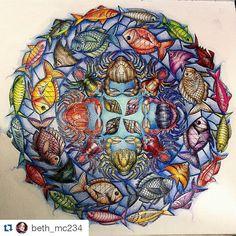 Instagram media desenhoscolorir - Lindo demais! By @beth_mc234 ・・#oceanoperdido #johannabasford #lostocean #coloringforadults #desenhoscolorir