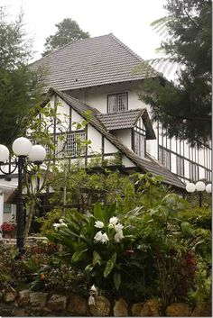 "Cameron Highlands – the ""forgotten paradise"" of Malaysia Japan Honeymoon, Strait Of Malacca, Cameron Highlands, Japan Style, Borneo, Travel Couple, Kuala Lumpur, Romantic Travel, Bucket Lists"