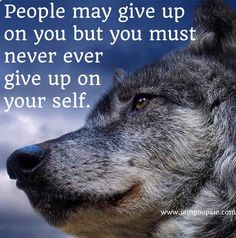 """""""Never give up on yourself"""" quote via www.IamPoopsie.com"""