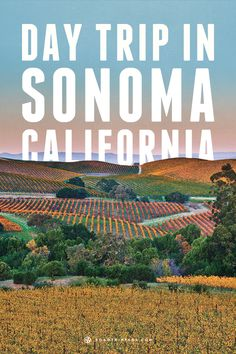 Have a day trip in Sonoma, California and explore local history and nature.