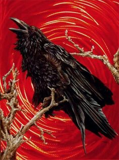 Airbrush Pin Galleries - Best Airbrush Art Images, Videos and Galleries: share, rate thousand of Pictures and discover the latest uploads! - Just Airbrush Crow Art, Bird Art, Raven Bird, Raven Wings, Crow Tattoo Design, Wicked Tattoos, Raven Tattoo, Jackdaw, Crows Ravens