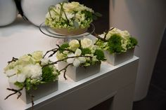 I burgundy gerbera, cream carnation, brown orchid