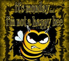 Monday not a happy bee