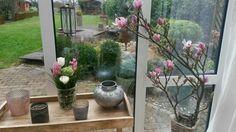 Wintergarten geschmückt Glass Vase, Plants, Home Decor, Winter Garden, Schmuck, Crafting, Decoration Home, Room Decor, Plant