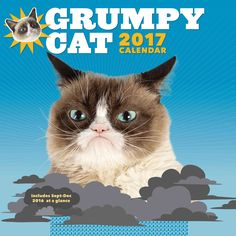 Everyone's favorite grump is back with a year's worth of epic frowns and hilariously cranky commentary.