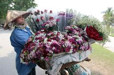 A woman sells flowers on a street in Hanoi, March 7. Vietnamese men usually offer flowers and gifts to women on International Women's Day.  I like the idea!!!