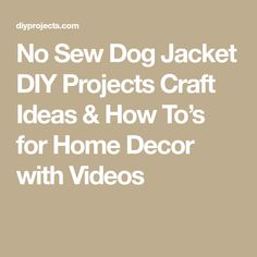 No Sew Dog Jacket DIY Projects Craft Ideas & How To's for Home Decor with Videos