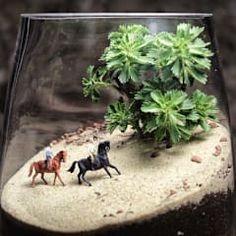 MyHobbyMarket & Peri Bahçemが手掛けた家庭用品 Terrarium Scene, Terrarium Plants, Succulent Terrarium, Moss Garden, Gnome Garden, Mini Bonsai, Sand Art, Miniature Fairy Gardens, Small Gardens