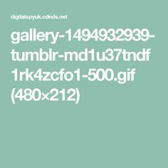 gallery-1494932939-tumblr-md1u37tndf1rk4zcfo1-500.gif (480×212)
