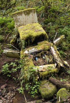 Abandoned Lincoln. Forest Park, Portland, Oregon. Photo by Curtis Perry. Source Flickr.com