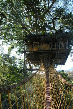 Green Magic Treehouse 2 in a tropical rain forest, Wayanad, Kerala, India. This company website has a whole bunch of treehouse accommodations across a wide variety of eco-resorts in Kerala.