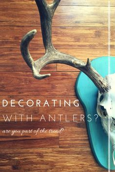 Deer Antlers | Decorating | And a Confession - Farm Fresh Vintage Finds