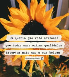 Bom dia, mores🌻💛 Happy Thoughts Quotes, Daily Thoughts, Happy Quotes, New Quotes, Change Quotes, Love Quotes, Inspirational Quotes, Wisdom Quotes, Happy Scripture