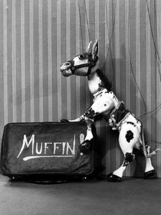 Muffin the Mule, 1952 Devastated when Annett Mills died, I was old, that's when I realized that dead meant you didn't see them ever again. Vintage Toys 1960s, Vintage Tv, Nostalgic Images, Kids Tv Shows, My Childhood Memories, Old Tv, My Memory, Nostalgia, Panda