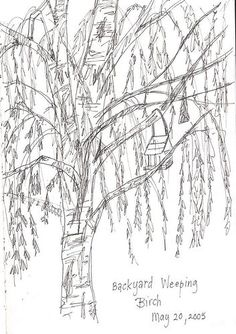 #tree #art #journaling- love weeping willows